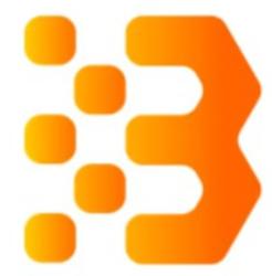 Bitcoin and Ethereum Standard Token