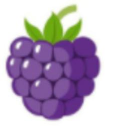 Blackberry Token
