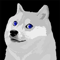 Blue Eyes White Doge