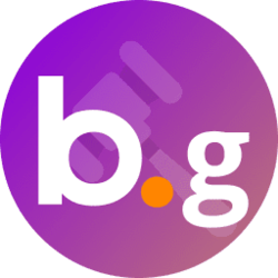 bns-governance