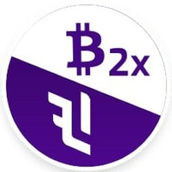 BTC 2x Flexible Leverage Index