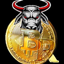 Bull Run Finance