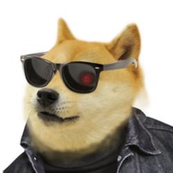 DogeFi