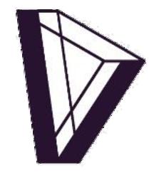 dvision-network