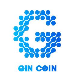 gin-token