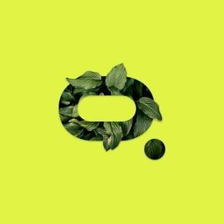 moss-carbon-credit