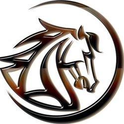 MustangCoin