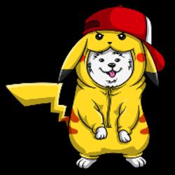 pikachu-inu