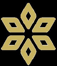 Spores Network