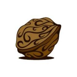 Walnut.finance