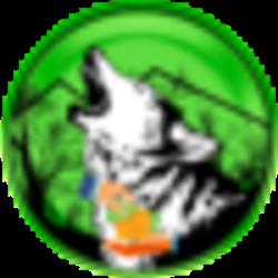 wolfsafepoorpeople-polygon